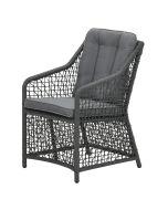 Alexandria tuoli, polyrottinki